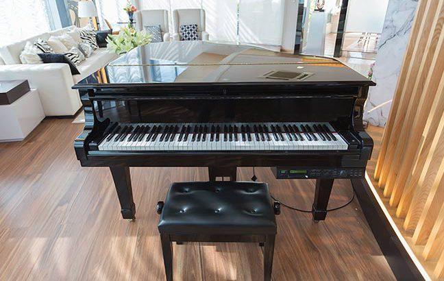 piano preto em sala de estar